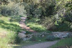 Claremont Parks