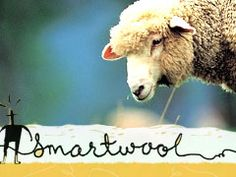 LOVE smartwool products!