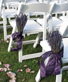 Lavender bunches as aisle flowers.