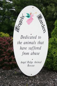 Angel Ridge Animal Rescue - Angels Animal Rescue Quotes, Animal Rescue Site, Compassion, Adoption, Angels, Dogs, Life, Foster Care Adoption, Angel