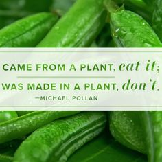 Love this quote from Michael Pollan!