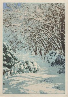 My solitudes - Forest in winter, by David Bull, 2009.