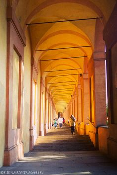 "Italy  - Emilia Romagna  - Bologna  - ""Solo in Bologna"" by @Ordinary C C Traveler"