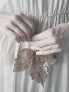 Love at first sight - Monia Merlo 's photography takes my breath away. Half Elf, Pale Aesthetic, Aesthetic Body, Hand Photography, Hand Reference, Ethereal, Character Inspiration, Just In Case, Delicate