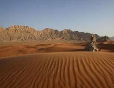 Sharjah Natural History Museum and Desert Park