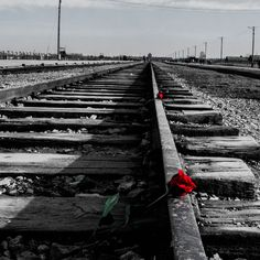 #auschwitz #Recuerdo #campodeconcentración
