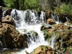 Always NEW photos of Samos, photo of Samos foto, up to date pictures of Samos, samos-online pictures. I try to keep you up to date with a foto gallery of samos, what's happening on Samos events. Online Photo Gallery, Samos, Green Colors, Greece, Photo Galleries, Waterfall, Island, Pictures, Outdoor