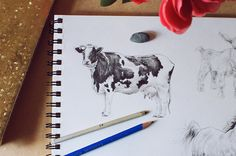 Can't get enough of drawing animals? In the final installment of our series on how to draw realistic pets and farm animals, we demonstrate the step-by-step process of how to draw a pig and a cow in a realistic way.