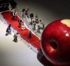 リンゴの皮は、真っ赤なレッドカーペット!