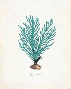 Vintage Green Sage Sea Coral on Antique Ephemera Print 8x10 P275 by OrangeTail on Etsy https://www.etsy.com/listing/150933132/vintage-green-sage-sea-coral-on-antique