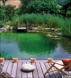 Piscine naturelle: une piscine écolo zéro entretien Every company as its own way of creating Swimming Pool Pond, Natural Swimming Ponds, Natural Pond, Water Pond, Water Garden, Pond Waterfall, Pool Sizes, Small Pools, Dream Pools