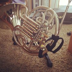 French horn Sousaphone, French Horn, Trombone, Horns, Passion, Ceiling Lights, Future, Musica, Bands