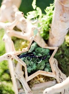 Wedding Ring Bearer Pillow Idea With A Wooden Star Filled With Moss A wooden star filled with moss and with rings is a creative idea for a woodland wedding. Ring Bearer Pillows, Ring Pillows, Wedding Pillows, Ring Pillow Wedding, Ring Holder Wedding, Wedding Rings, Wedding Ring Photography, Photography Ideas, Wedding Mood Board