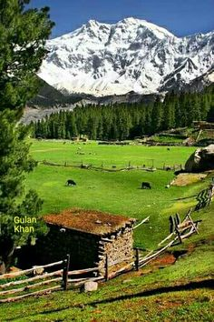 Fantastic,wonderful,great photography of the Nanga Parbat fairy meadows Gilgit Baltistan Pakistan