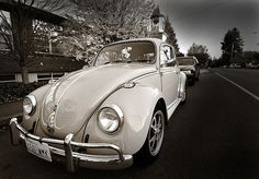Vintage Volks - my sisters and I had one in our teens, we painted it electric blue and put big flower decals on it.it didn't go fast but it was fun. Volkswagon Bug, Volkswagen, Vintage Cars, Antique Cars, Car Backgrounds, Best Muscle Cars, Best Classic Cars, Vw Beetles, Vw Bus
