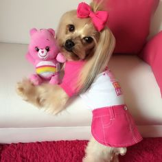 Fetch Care Bears apparel for pets, available exclusively at PetSmart!