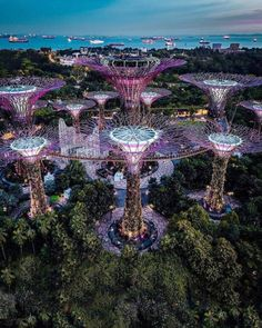 Architecture in Singapore you really need to see 😱 . Photos by 📸 Vacation Places, Dream Vacations, Places To Travel, Places To Visit, Singapore Photos, Singapore Travel, Singapore Guide, Wanderlust Hotel, Beau Site