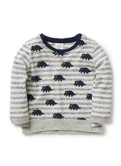Baby Boys Tops & Tees | Dino And Stripe Long Sleeve Tee | Seed Heritage