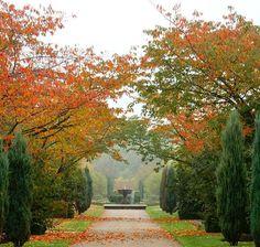 Regents Park, London in Autumn.