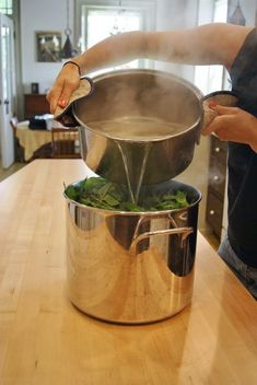 A How-To: Making Mint Tea Concentrate – Whole Eats & Whole Treats Fresh Mint Tea, Mint Iced Tea, Tea Concentrate Recipe, Spearmint Tea, Non Alcoholic Drinks, Beverages, Cocktails, Tea Drinks, Mint Recipes