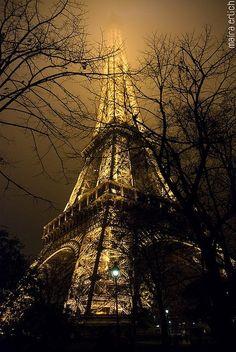 Amazing structure...