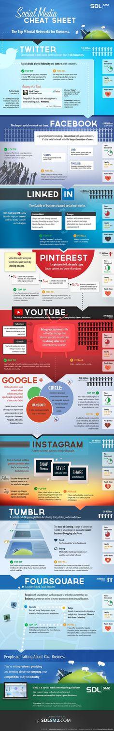 9 Top Social Networks For Businesses #Infographic #socialnetwork #socialmedia