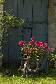 Wheelbarrow of flowers...