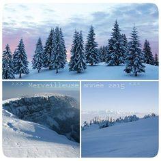 l'hiver dans le Jura