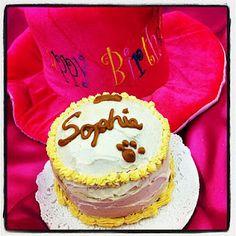 Sophie's birthday cake! :)