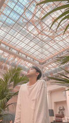 Kpop Backgrounds, Aesthetic Backgrounds, Jisoo Seventeen, Nct Album, Wheein Mamamoo, Nct Doyoung, Korean People, Nct Life, Marvel Wallpaper