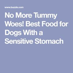 No More Tummy Woes! Best Food for Dogs With a Sensitive Stomach