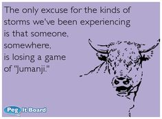"""The only excuse for the kinds of storms we've been experiencing is that someone, somewhere, is losing a game of """"Jumanji."""" #ecard #lol #funny #haha #hilarious #jokes #humor #ecards"""