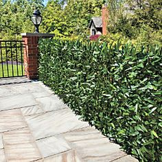 Faux Ivy and Bamboo Privacy Screens Patio Garden, Backyard Paradise, Outdoor Projects, Bamboo Privacy, Backyard Privacy, Outdoor Gardens, Hedges, Backyard, Fence Landscaping