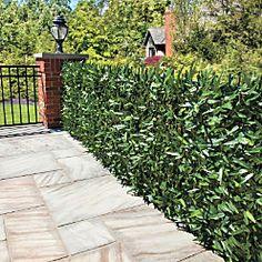 Faux Ivy and Bamboo Privacy Screens Patio Garden, Backyard Paradise, Backyard Landscaping, Outdoor Projects, Bamboo Privacy, Backyard Privacy, Outdoor Gardens, Hedges, Backyard