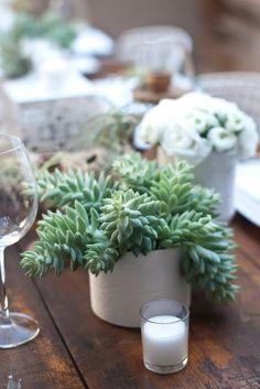"JL DESIGNS: an organic ""desert retro"" tablescape for 944 magazine Cacti And Succulents, Planting Succulents, Garden Plants, Indoor Plants, Planting Flowers, White Ranunculus, Anemones, Succulent Centerpieces, Modern Backyard"