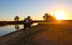 My cowboy Brian Dingman rides into the African Sunset after a livestock drive of 650 head of sheep to a new field at Julian Melck's 243 year old family farmstead, Kersefontein, founded in 1770 in the Western Cape of South Africa.