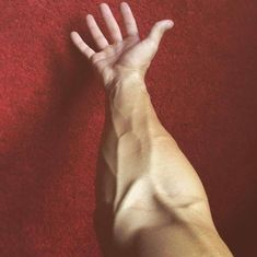 I want to see cuts on this beautiful arm 😕 Cuts r hot af 😶 Nali Fairy Tail, Arm Veins, Fittness, Xavier Samuel, Beauté Blonde, Accel World, Daddy Aesthetic, Aesthetic Body, Kirishima Eijirou