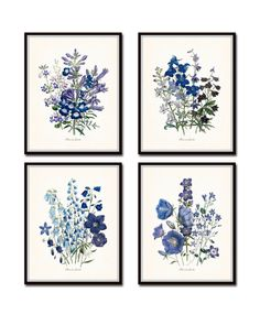 """""""FLOWERS OF THE GARDEN"""" BLUE SERIES PRINT SET NO. 13 This fine art print set features 4 antique botanical illustrations in shades of blue, violet and periwinkle which have been digitally enhanced and"""