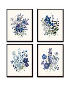Fleurs de Jardin Botanical Print Set Set of 4 Gicle. Botanical Prints, Floral Prints, Decoration, Art Decor, Impressions Botaniques, Illustration Botanique, Arte Floral, Fine Art Prints, Gallery Wall