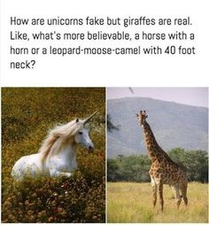 38 90's Memes Pictures That Will Blow Your Mind Today | MemesPanda 9gag Funny, Stupid Funny Memes, Funny Relatable Memes, Funny Cute, Really Funny, Funny Stuff, Funny Things, Random Stuff, Jokes