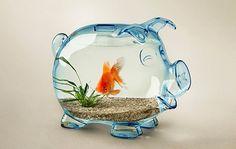 Funny Pig Fish Bowl- too cute This Little Piggy, Little Pigs, Aquarium Original, Cool Fish Tanks, Funny Pigs, Funny Commercials, Cute Piggies, Cute Photography, Creative Photography