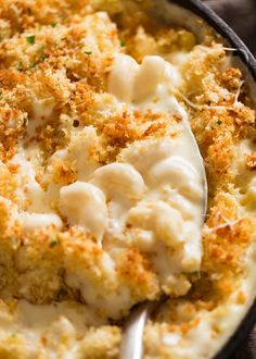 Baked Mac and Cheese - Pasta! - Close up of Baked Mac and Cheese fresh out of the oven - Oven Mac And Cheese, Baked Mac And Cheese Recipe, Best Macaroni And Cheese, Macaroni Cheese Recipes, Mac And Cheese Homemade, Baked Cheese, Mac And Cheese Recipe With Bread Crumbs, Mac And Cheese Receta, Gastronomia