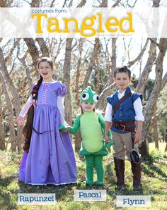 "DIY Halloween Costumes: Rapunzel, Flynn Rider, and Pascal from ""Tangled"".  The Whole crew together......plus a quick video! :)  www.makeit-loveit.com"