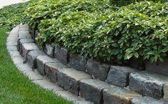 30 Brilliant Garden Edging Ideas You Can Do At Home - Garden Lovers Club Garden Edging Stones, Landscape Edging Stone, Patio Edging, Stone Edging, Brick Edging, Landscape Borders, Garden Borders, Garden Paths, Landscape Design