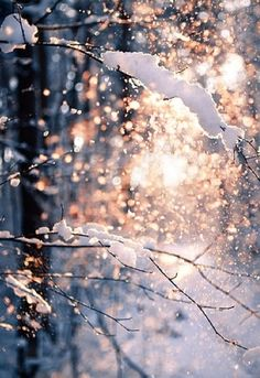 New snow bokeh light outdoors nature winter sun snow