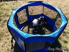 Dog Playpen - massive selection. Need to view...