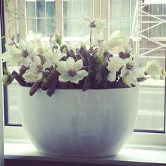 Bloempot opgemaakt met zijde bloemen door intratuin House Goals, Diy Projects To Try, Flower Arrangements, Sweet Home, New Homes, Bouquet, House Styles, Decoration, Home Decor