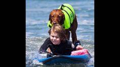 Surf Dog Ricochet surfs with brain injured 6 year old