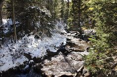 Snowy Creek-Samantha Jerred- copyright- All Rights Reserved
