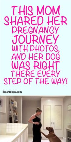 This Mom Shared Her Pregnancy Journey With Photos, And Her Dog Was Right There Evert Step Of The Way!